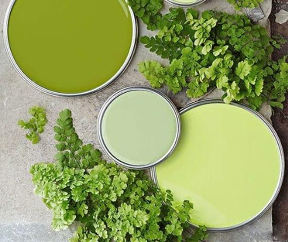 تأثير الأخضر على النفسية
